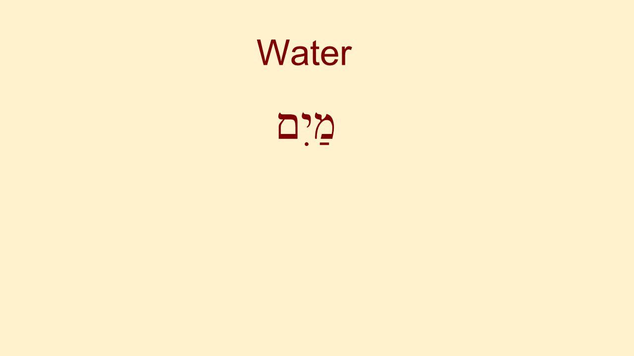 Water מַיִם