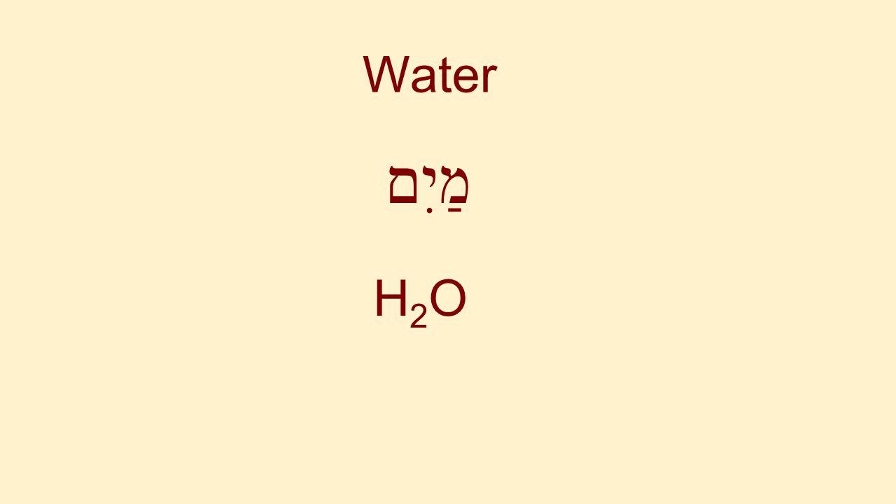 Water מַיִם H2O