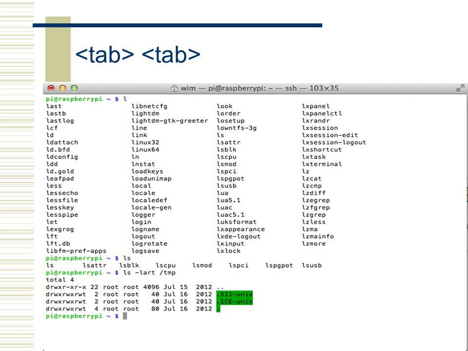 <tab> <tab>