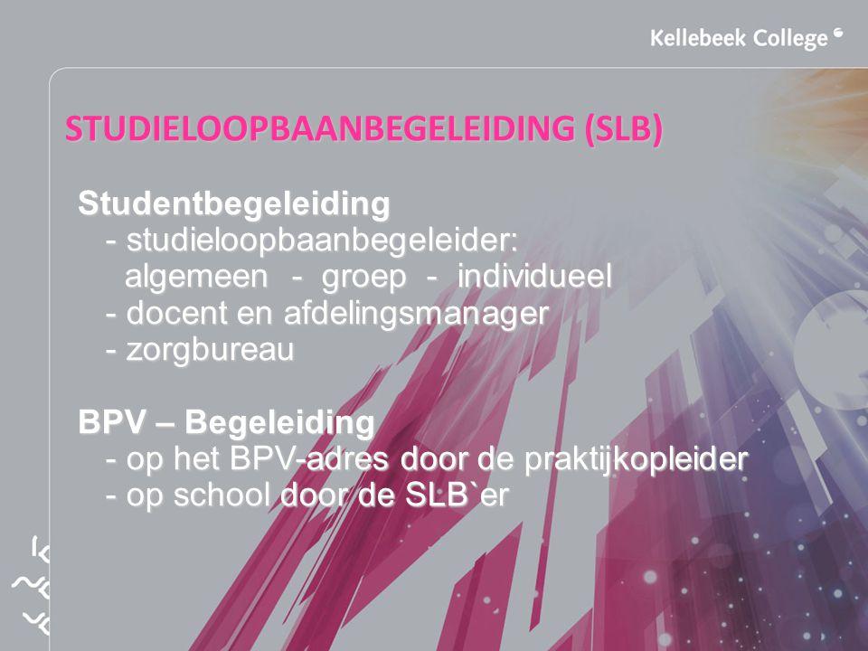 STUDIELOOPBAANBEGELEIDING (SLB)