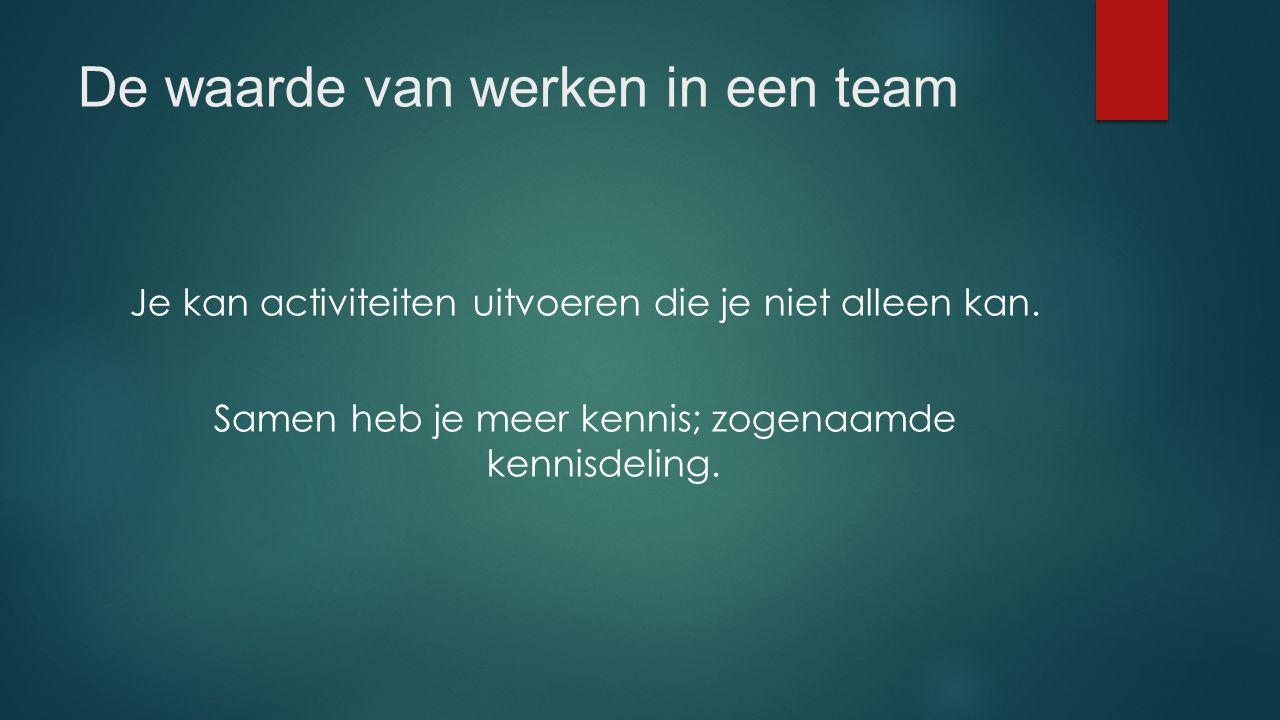 De waarde van werken in een team