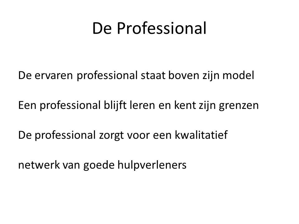 De Professional De ervaren professional staat boven zijn model