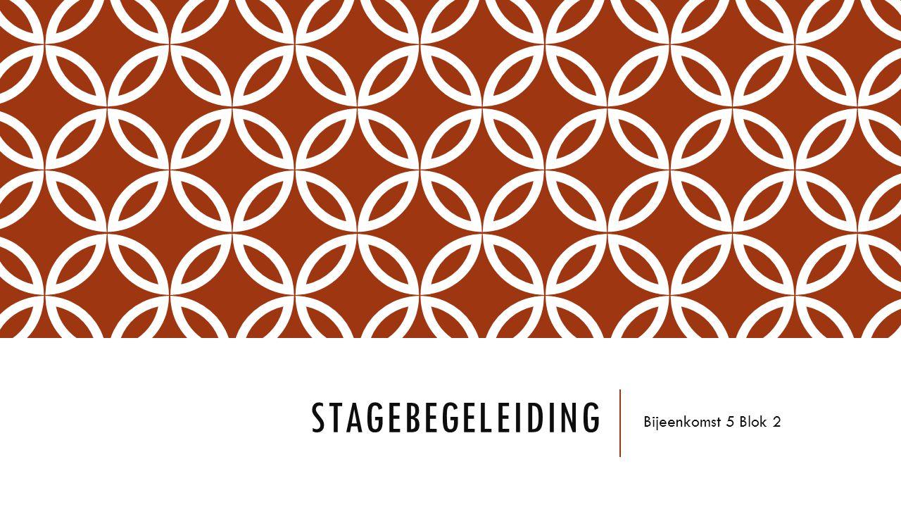 Stagebegeleiding Bijeenkomst 5 Blok 2
