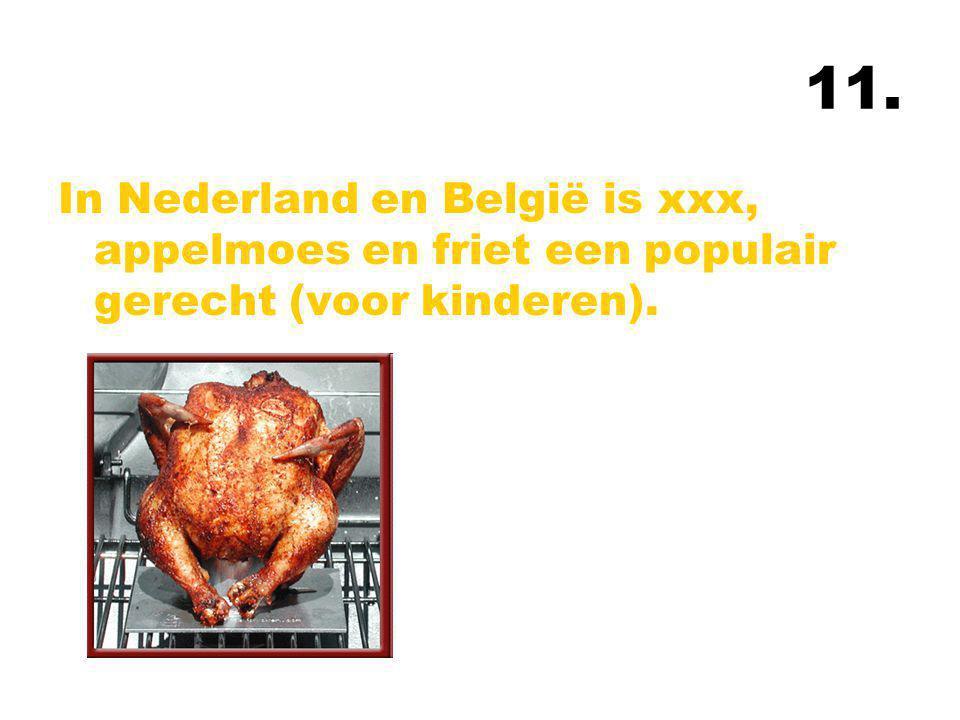 11. In Nederland en België is xxx, appelmoes en friet een populair gerecht (voor kinderen).