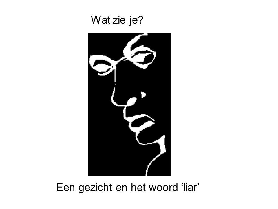 Een gezicht en het woord 'liar'
