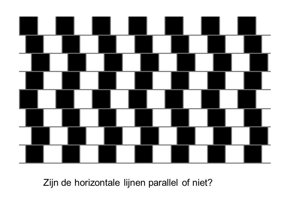 Zijn de horizontale lijnen parallel of niet