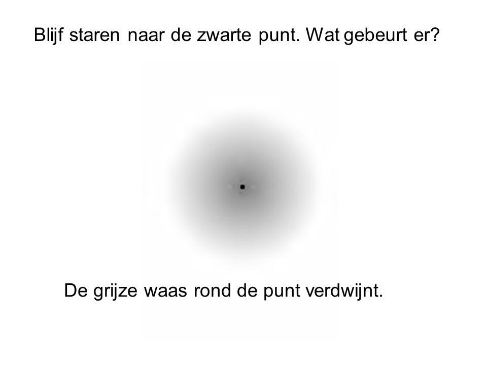 Blijf staren naar de zwarte punt. Wat gebeurt er
