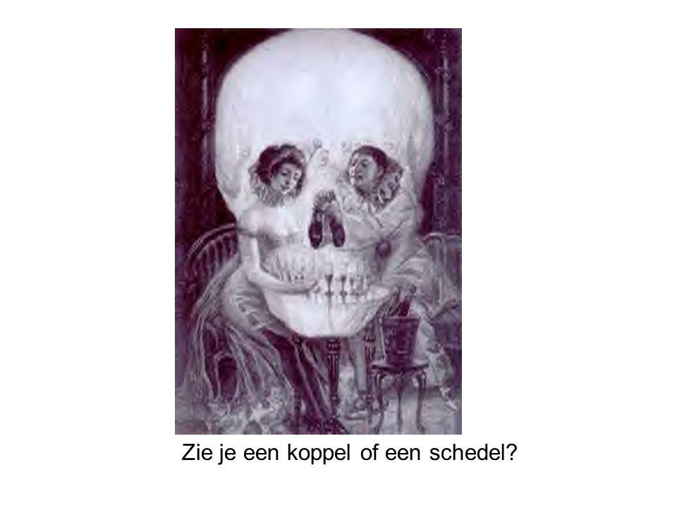 Zie je een koppel of een schedel