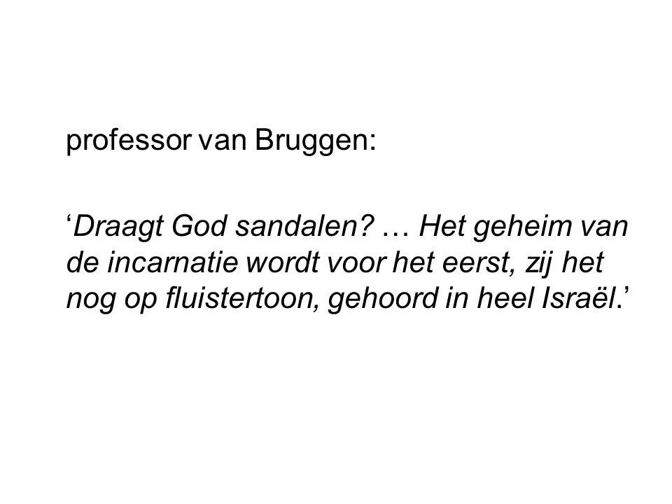 professor van Bruggen:
