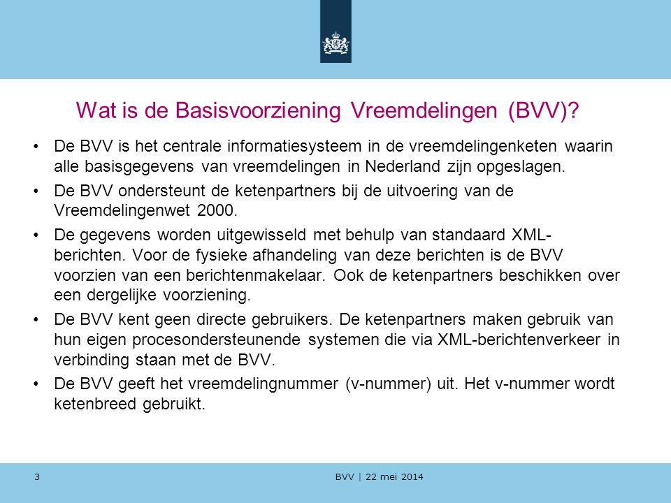 Wat is de Basisvoorziening Vreemdelingen (BVV)