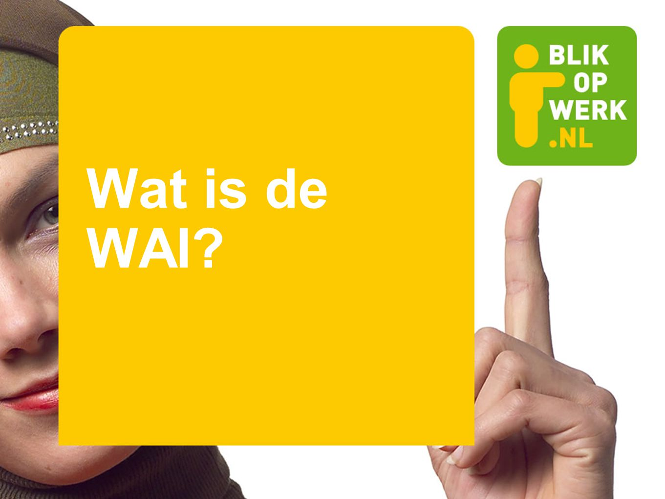Wat is de WAI