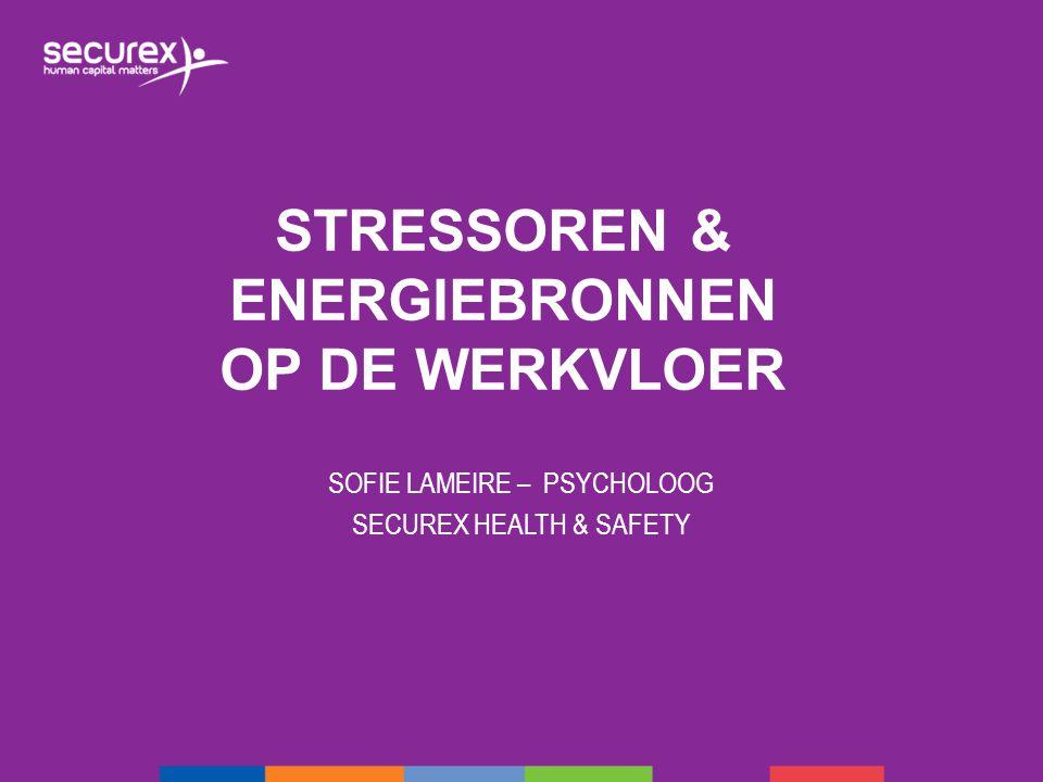 Stressoren & energiebronnen op de werkvloer