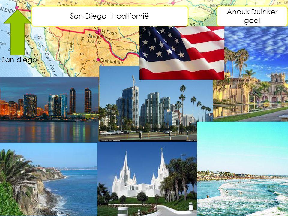 San Diego + californië Anouk Duinker geel San diego