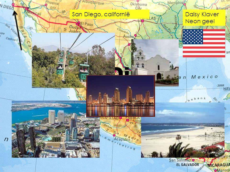 San Diego, californië Daisy Klaver Neon geel San Diego