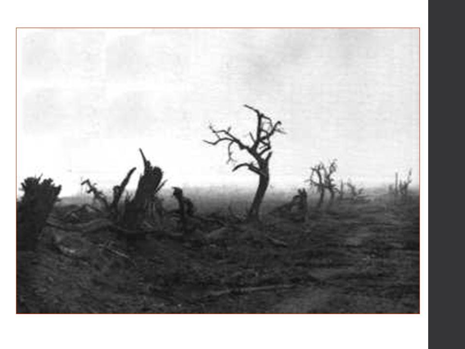 Tegen het einde van 1914 verstarde de bewegingsoorlog, zowel op het westelijke als het oostelijk front, in een loopgravenoorlog.