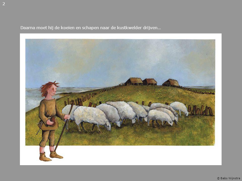 Daarna moet hij de koeien en schapen naar de kustkwelder drijven…