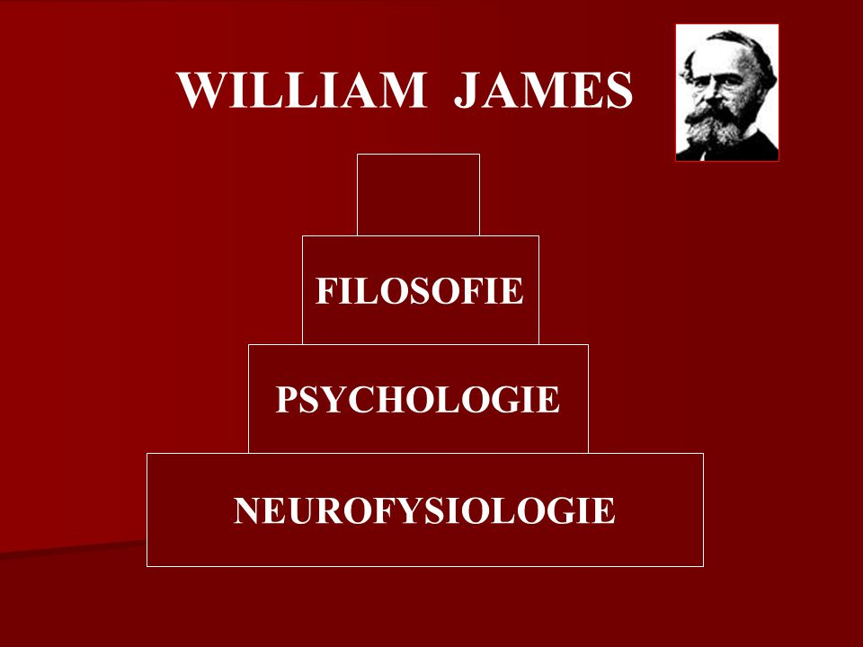 WILLIAM JAMES FILOSOFIE PSYCHOLOGIE NEUROFYSIOLOGIE