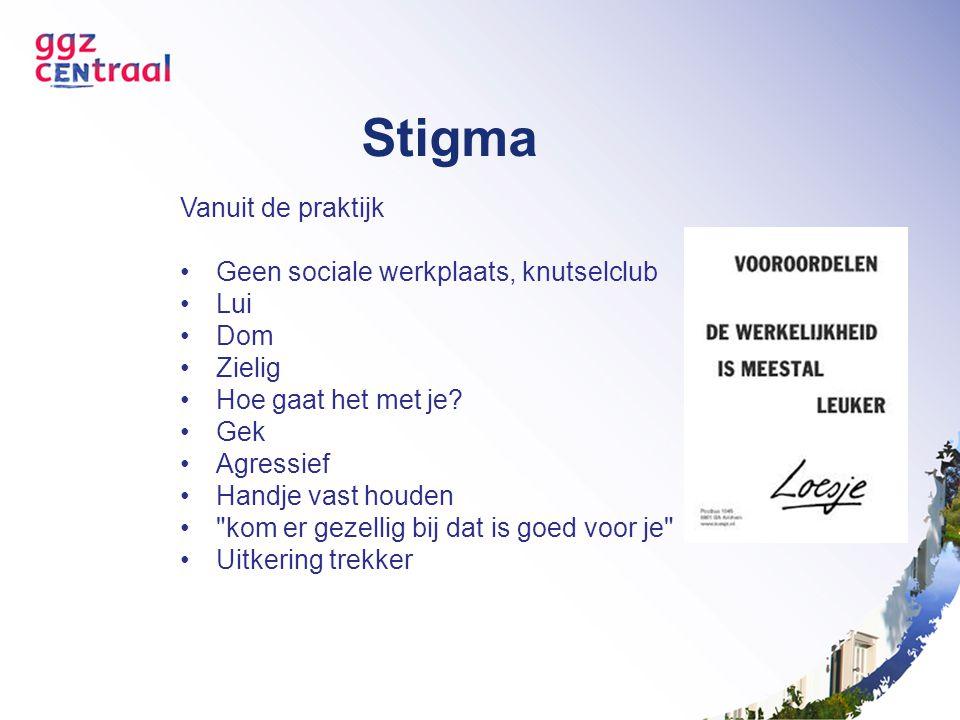 Stigma Vanuit de praktijk Geen sociale werkplaats, knutselclub Lui Dom
