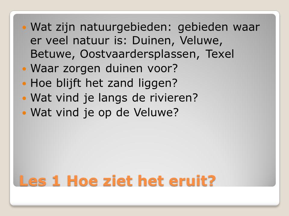 Wat zijn natuurgebieden: gebieden waar er veel natuur is: Duinen, Veluwe, Betuwe, Oostvaardersplassen, Texel