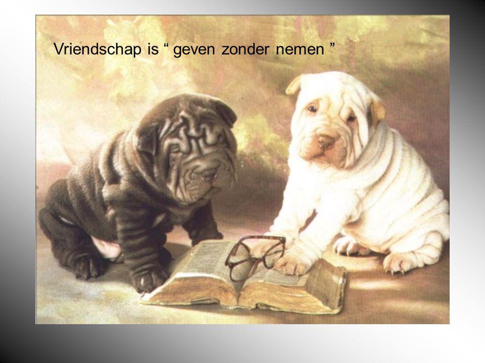 Vriendschap is geven zonder nemen