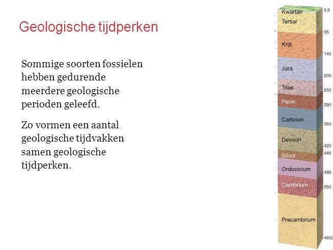 Geologische tijdperken