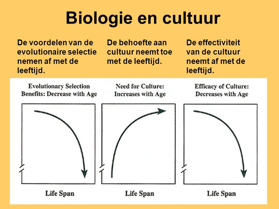 Biologie en cultuur De voordelen van de evolutionaire selectie
