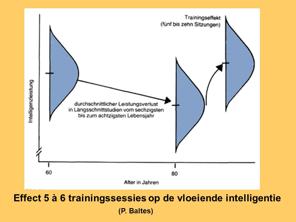 Effect 5 à 6 trainingssessies op de vloeiende intelligentie
