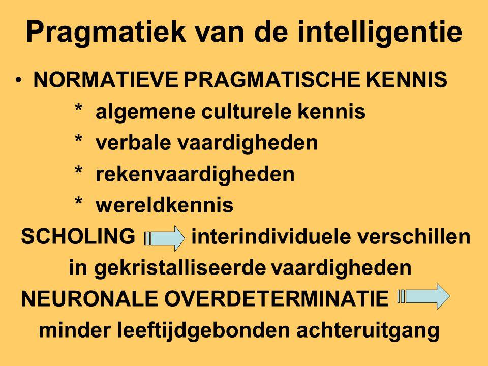 Pragmatiek van de intelligentie