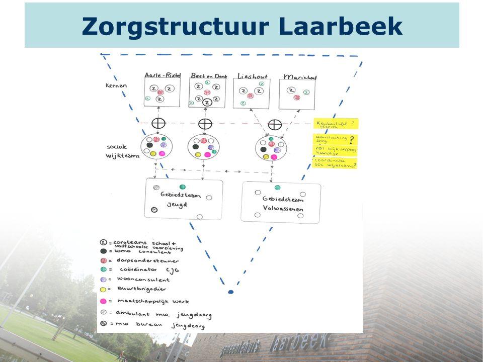 Zorgstructuur Laarbeek