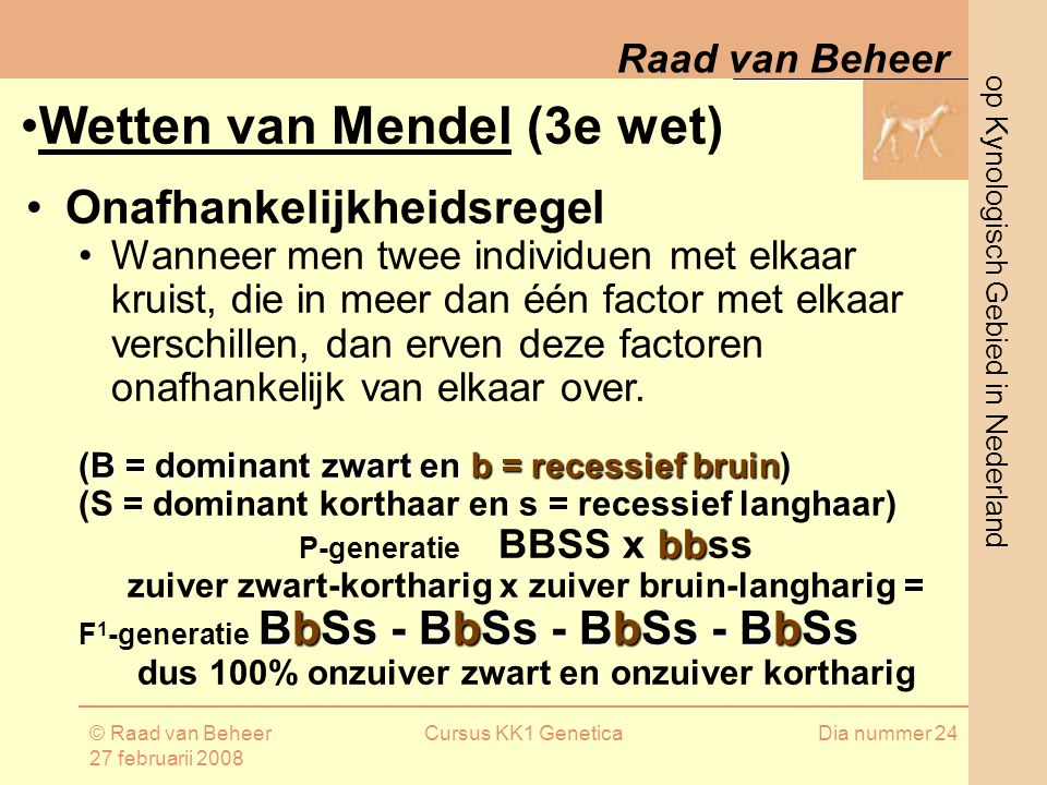 Wetten van Mendel (3e wet)