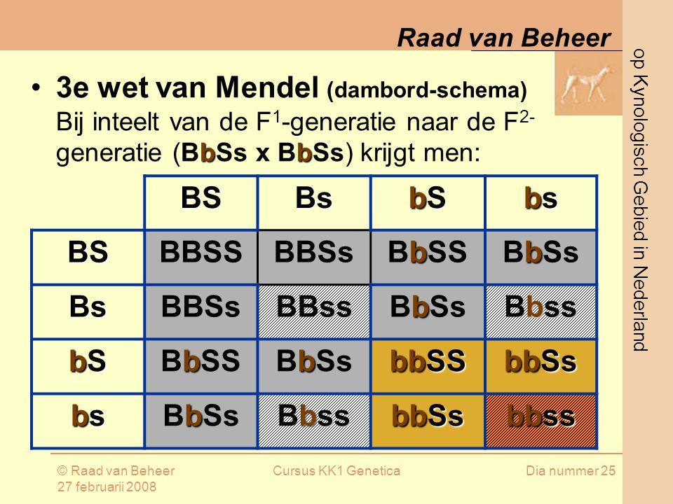 BS Bs bS bs BBSS BBSs BbSS BbSs BBss Bbss bbSS bbSs bbss