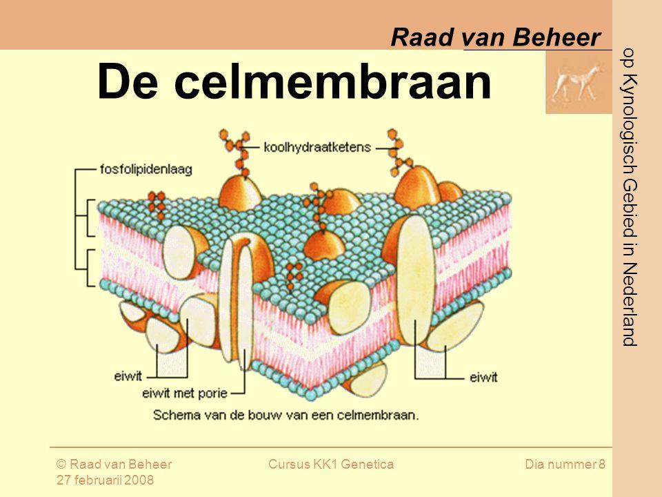 De celmembraan © Raad van Beheer 27 februarii 2008 Cursus KK1 Genetica