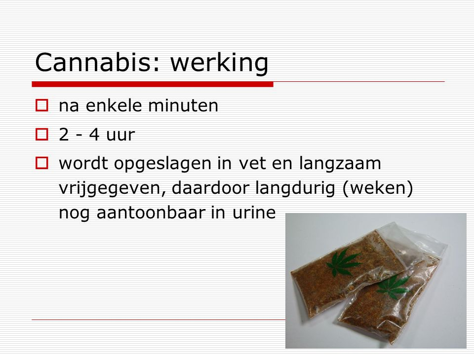 Cannabis: werking na enkele minuten 2 - 4 uur