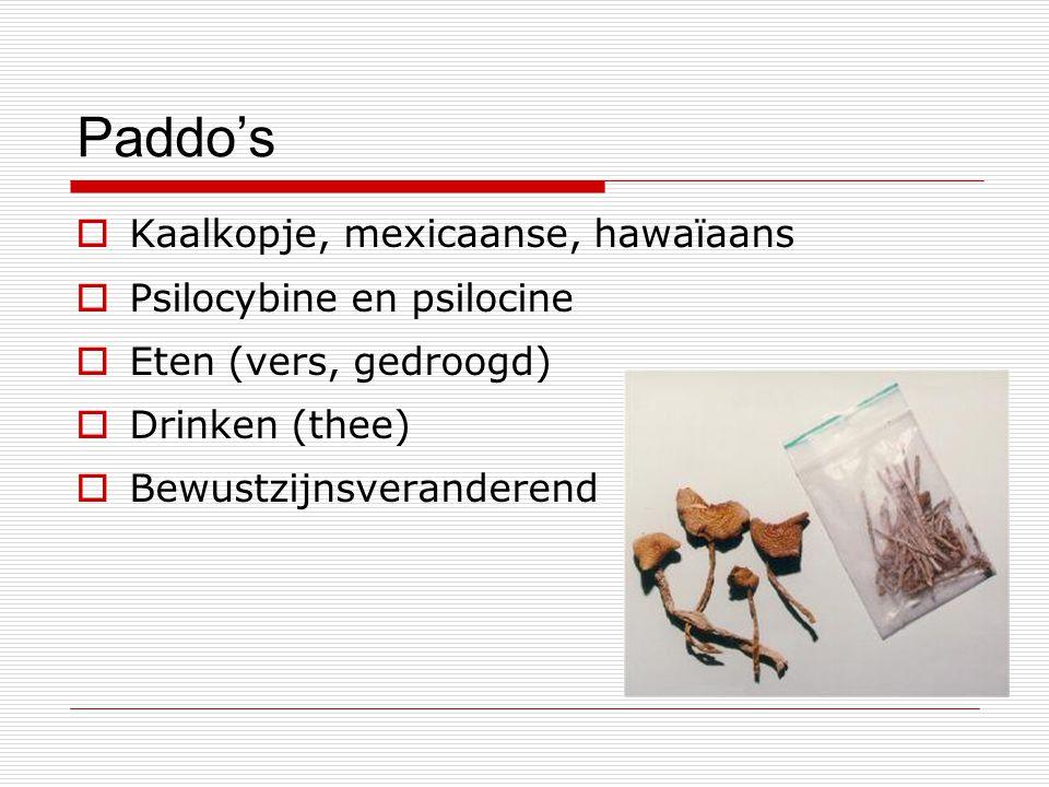 Paddo's Kaalkopje, mexicaanse, hawaïaans Psilocybine en psilocine