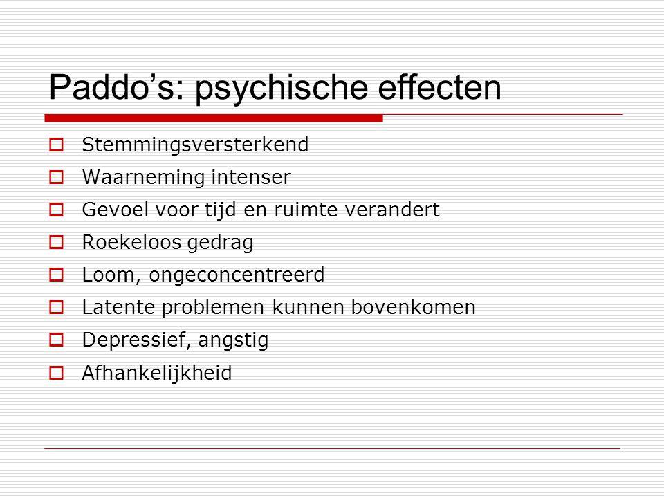 Paddo's: psychische effecten