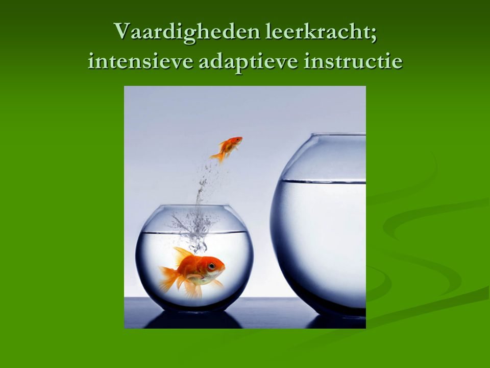 Vaardigheden leerkracht; intensieve adaptieve instructie