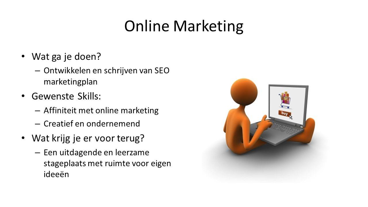Online Marketing Wat ga je doen Gewenste Skills: