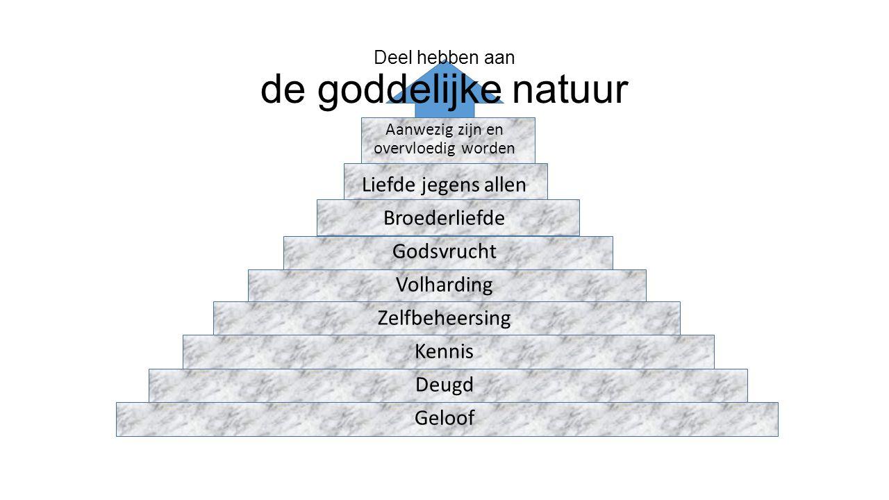 Deel hebben aan de goddelijke natuur