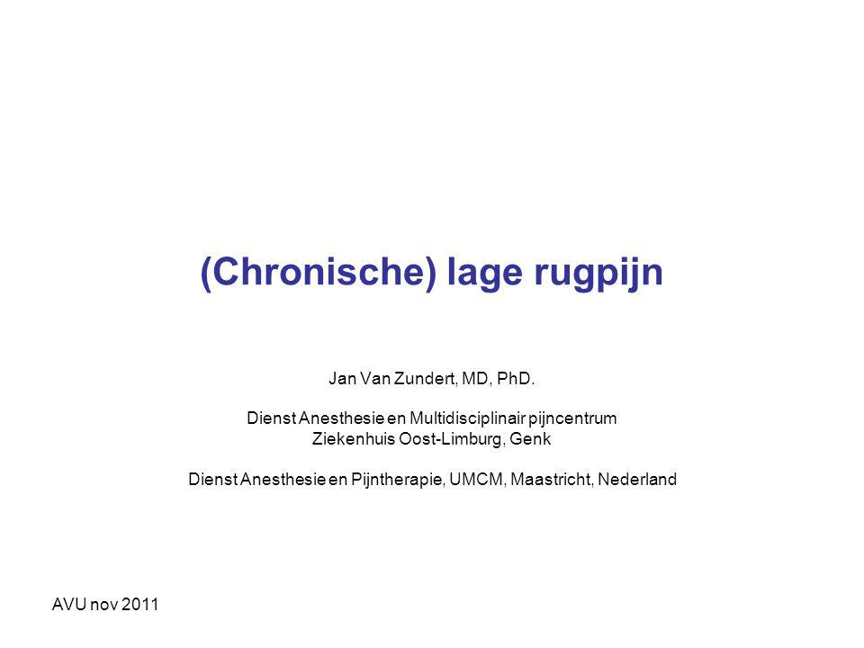 (Chronische) lage rugpijn