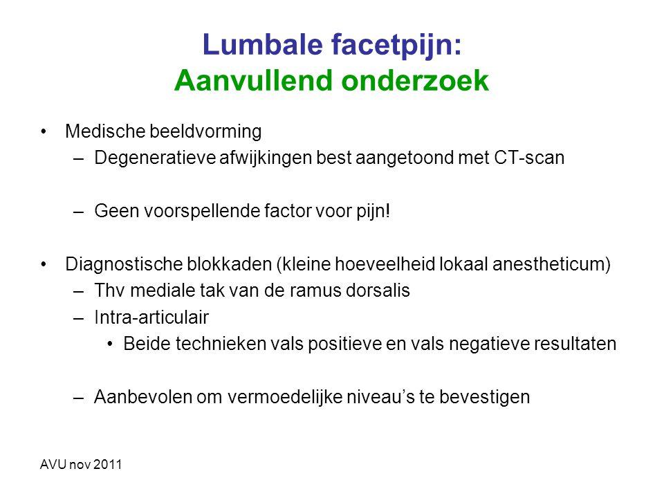 Lumbale facetpijn: Aanvullend onderzoek