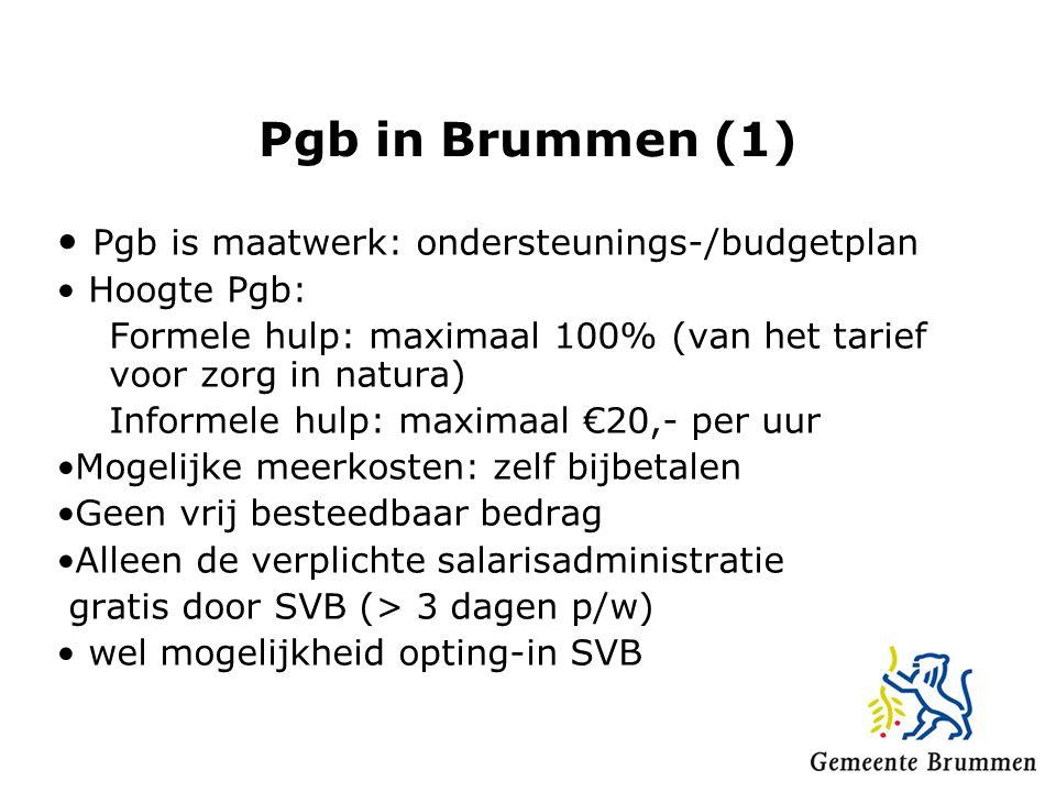 Pgb in Brummen (1) • Pgb is maatwerk: ondersteunings-/budgetplan