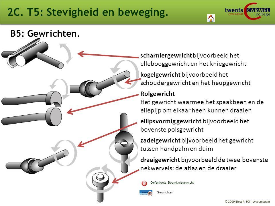 2C. T5: Stevigheid en beweging.