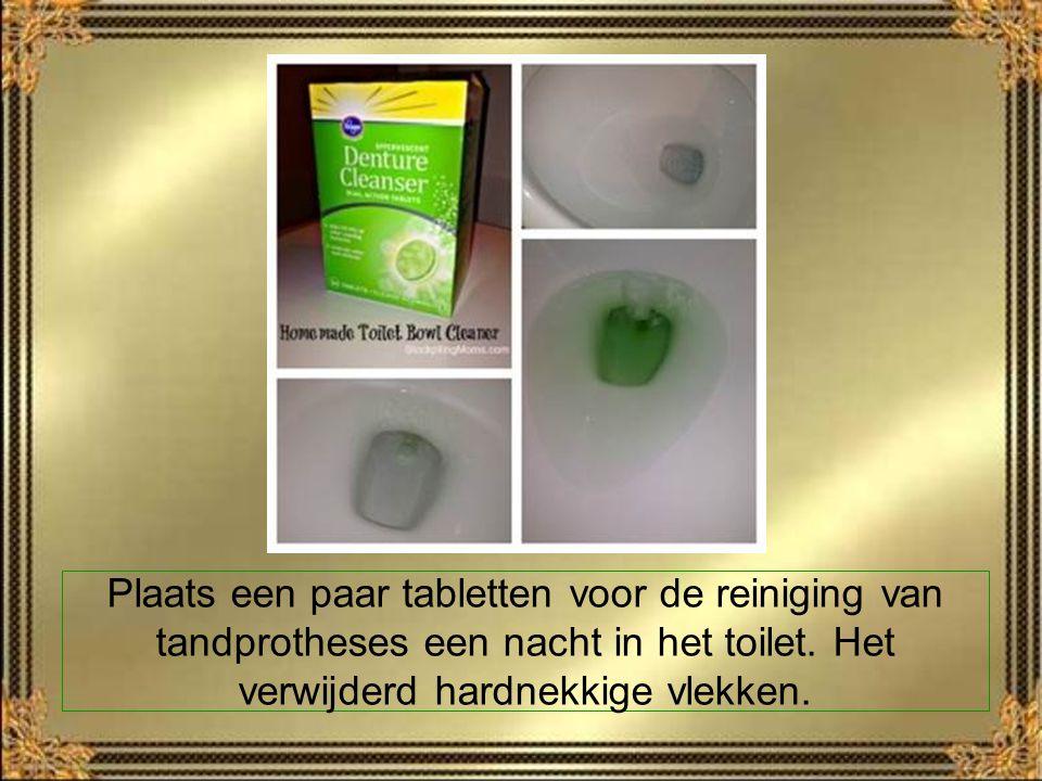 Plaats een paar tabletten voor de reiniging van tandprotheses een nacht in het toilet.