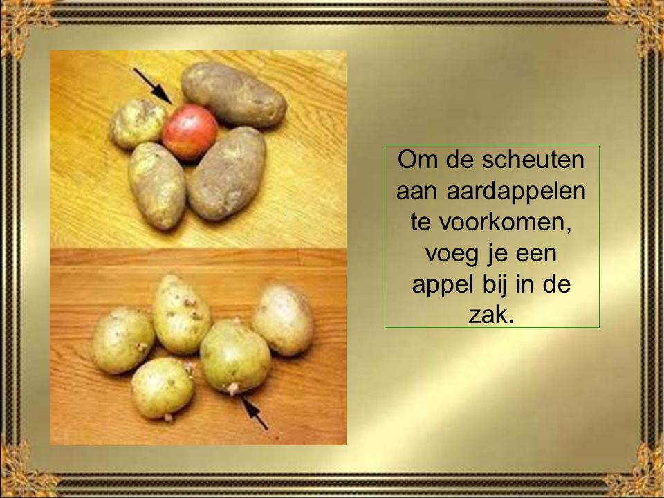 Om de scheuten aan aardappelen te voorkomen, voeg je een appel bij in de zak.