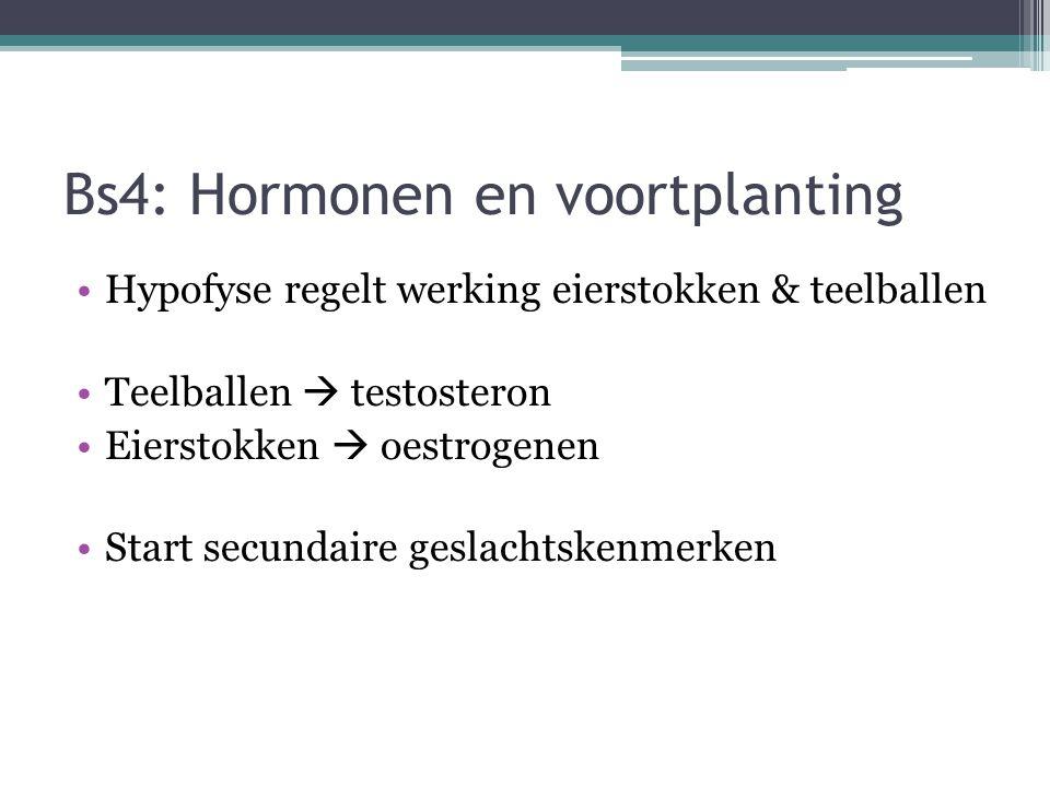 Bs4: Hormonen en voortplanting