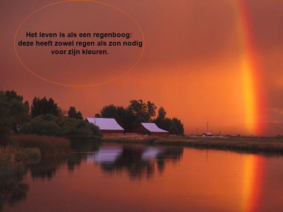 Het leven is als een regenboog: deze heeft zowel regen als zon nodig