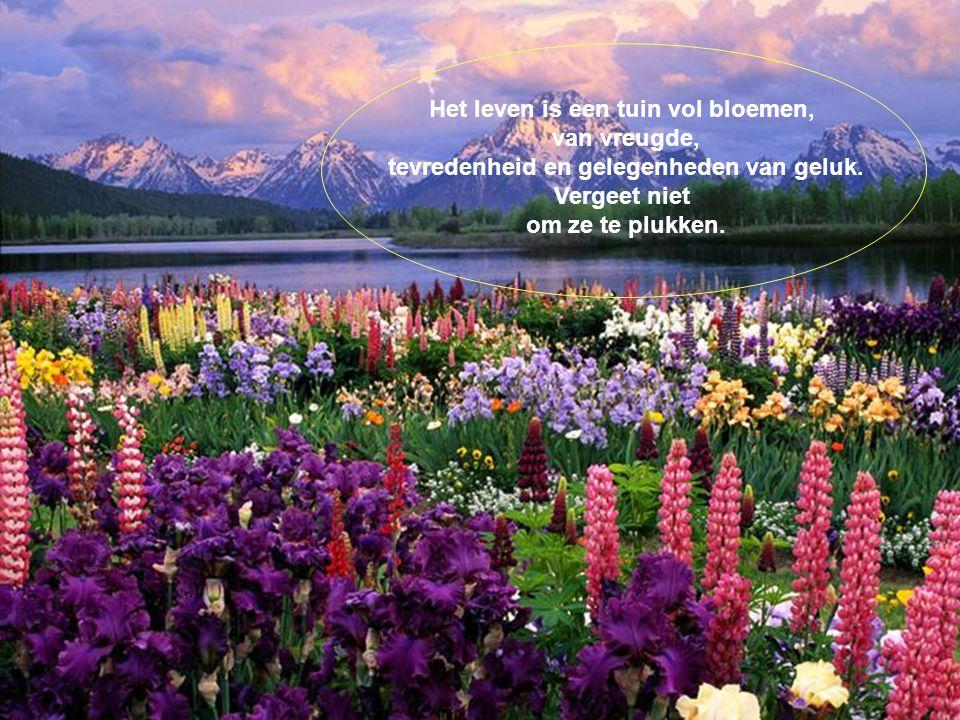 Het leven is een tuin vol bloemen, van vreugde,