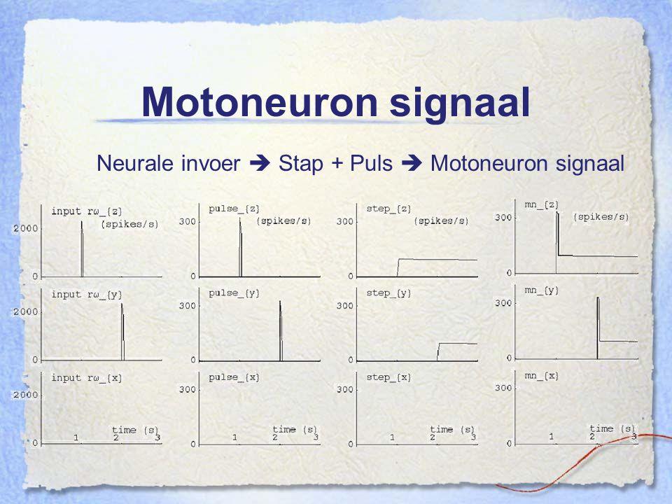 Motoneuron signaal Neurale invoer  Stap + Puls  Motoneuron signaal