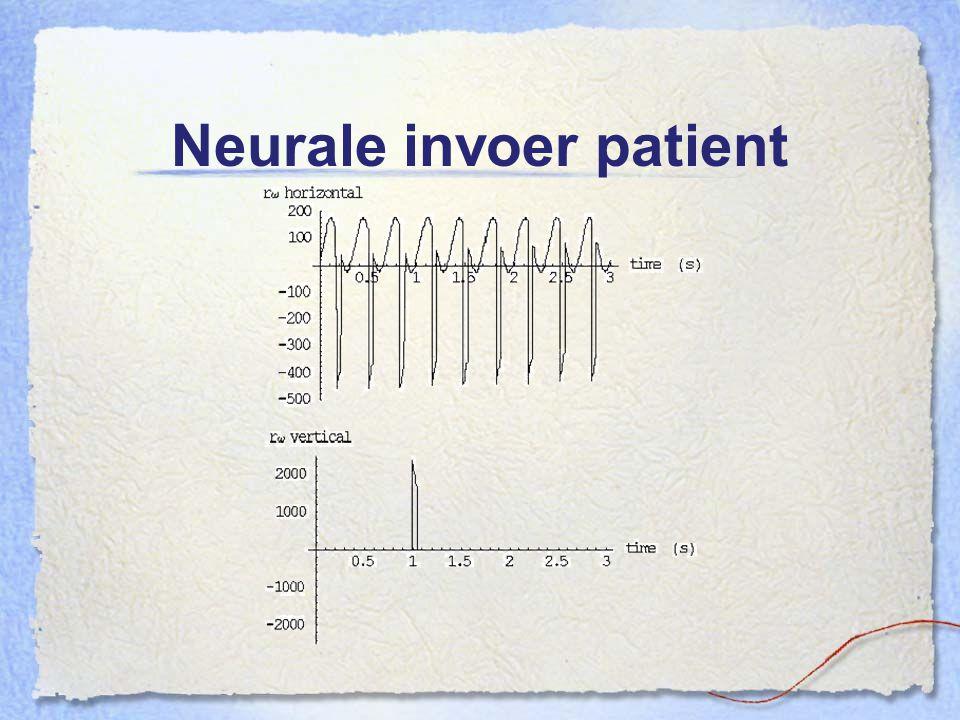 Neurale invoer patient