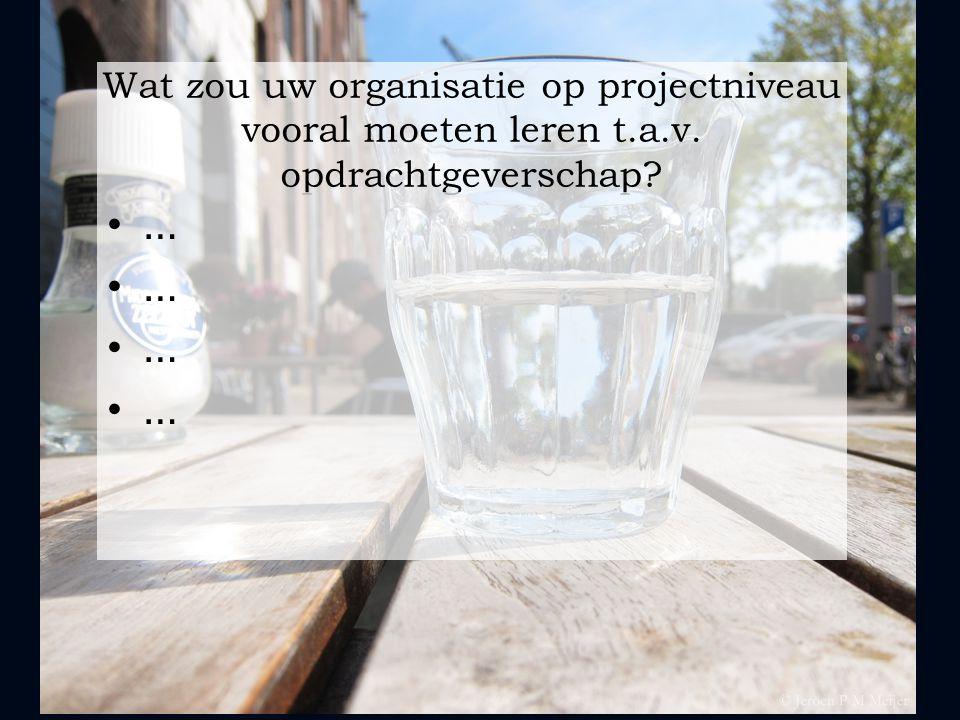 Wat zou uw organisatie op projectniveau vooral moeten leren t. a. v